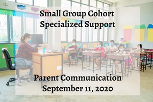 Small Group Cohort Specialized Support