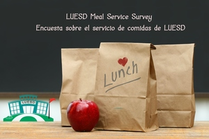 Lunch Service Survey