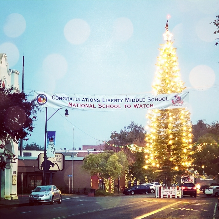 downtown Lemoore stw banner