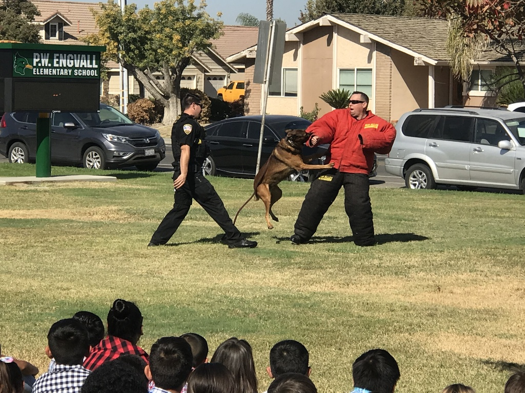 Lemoore Police Department officers and their K-9