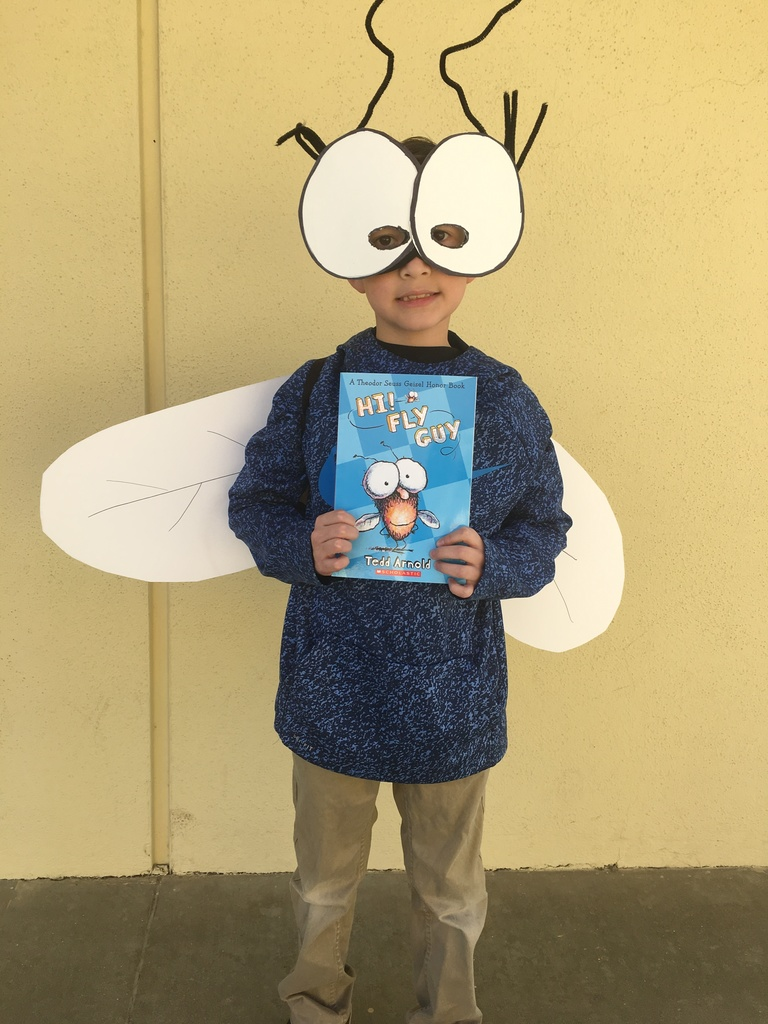 The storybook character Fly Guy